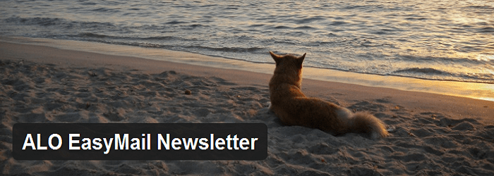 Email Newsletter plugins